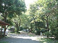 Arinomi01