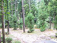 Kakiyamada01